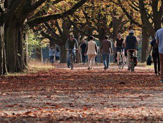 Codzienny spacer: dlaczego warto na niego postawić?
